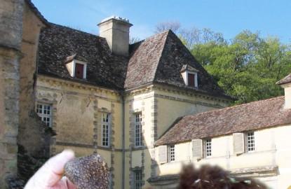Thierry Bezeux, maître trufficulteur de Bourgogne