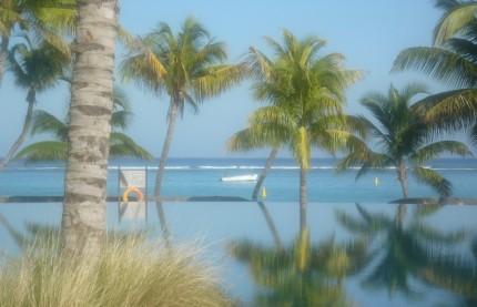 Les friandises de l'île Maurice (suite)
