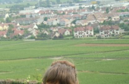 Compagnie des Vins d'Autrefois craint la flambée du bourgogne