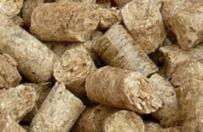 Bourgogne Pellets creuse de nouveaux sillons avec le miscanthus