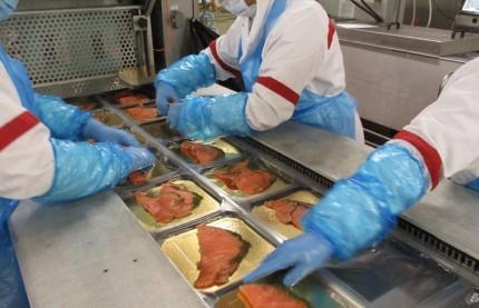 Investissements et embauches : le poissonnier alsacien Delpierre repart sur de nouvelles bases