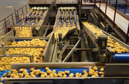 Parmentine s'offre une nouvelle usine de conditionnement de pommes de terre