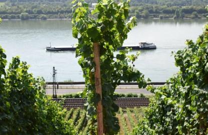 Quelques bonnes raisons de découvrir la Rhénanie-Palatinat, jumelée à la Bourgogne, à la foire de Dijon