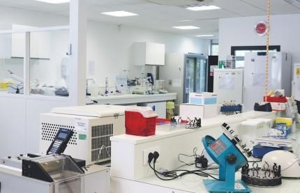 La pépite Biosynex accélère son développement à l'international pour poursuivre une croissance à deux chiffres