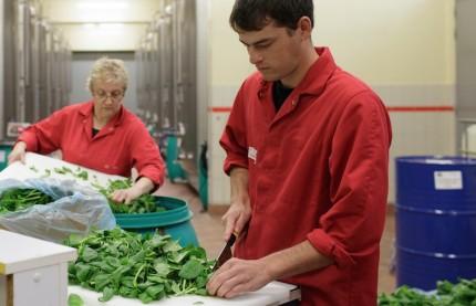 La distillerie Massenez rajeunit son image avec des eaux-de-vie et des liqueurs végétales