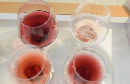 Expérience unique de dégustation à l'École des vins de Bourgogne