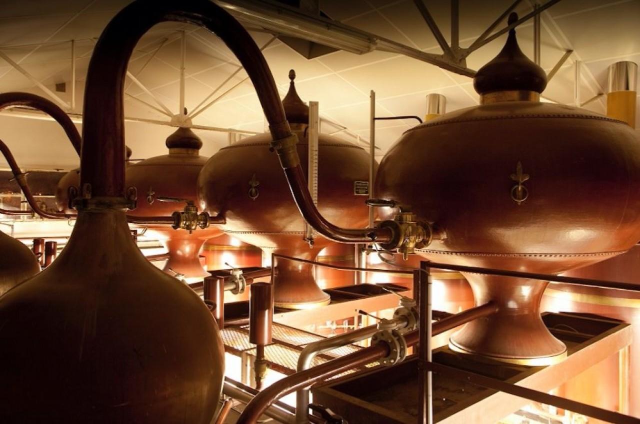 Alambics à Cognac chez Picard, dont l'activité spiritueux pèse 65% du chiffre d'affaires. © Picard.