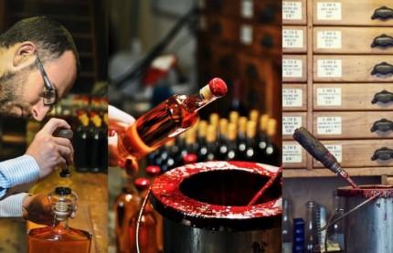 Brèves Bourgogne, l'essentiel de l'actualité économique vue par Traces Ecrite News