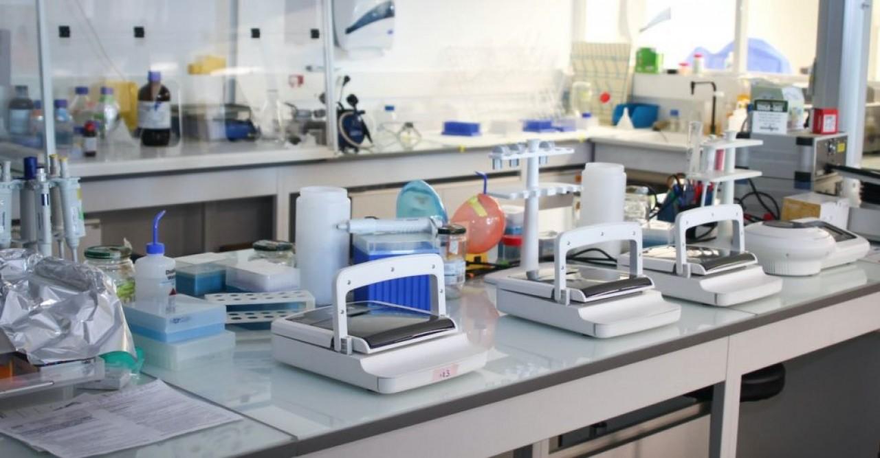 NVH Medicinal espère disposer d'un collagène injectable pour l'hémostase d'ici 3 ans, si les essais cliniques se passent comme espéré. Ici, des incubateurs de cellules. ©VHN.