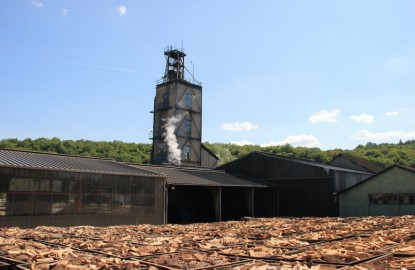 Bordet innove pour diversifier ses productions de charbon végétal