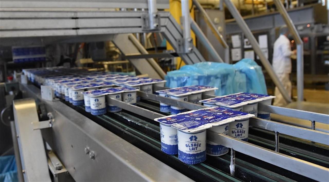 L'usine d'Alsace Lait à Hoerdt, près de Strasbourg, produit chaque année 55.000 tonnes de fromage frais. © Julie Giorgi.