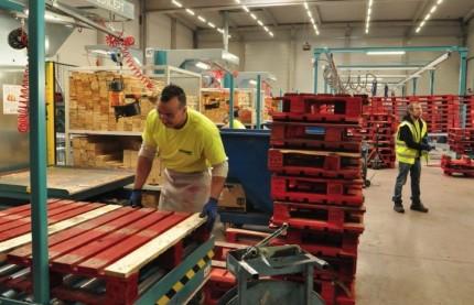 Le transporteur et logisticien lorrain MGE investit plus de cinq millions d'euros pour redonner vie aux palettes de l'industrie des boissons