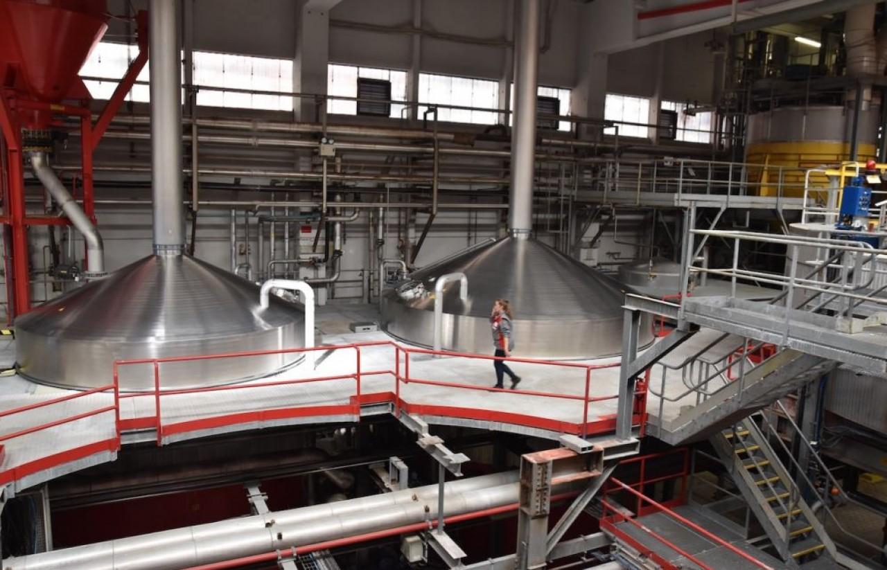 Le site de production de Kronenbourg à Obernai possède trois salles de brassage d'une capacité de production journalière de 30.000 hectolitres. © Julie Giorgi