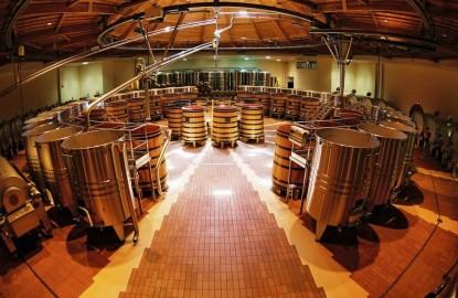 Taxation des vins français aux Etats-Unis : « le silence de l'administration et de nos hommes politiques devient insupportable »