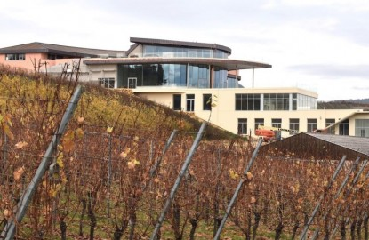 Le bâtiment pharaonique de Rolly-Gassmann, dans le vignoble d'Alsace, est achevé