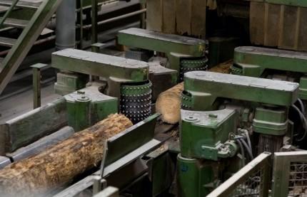 En Alsace, la scierie Siat poursuit ses investissements pour rester la numéro 1 française