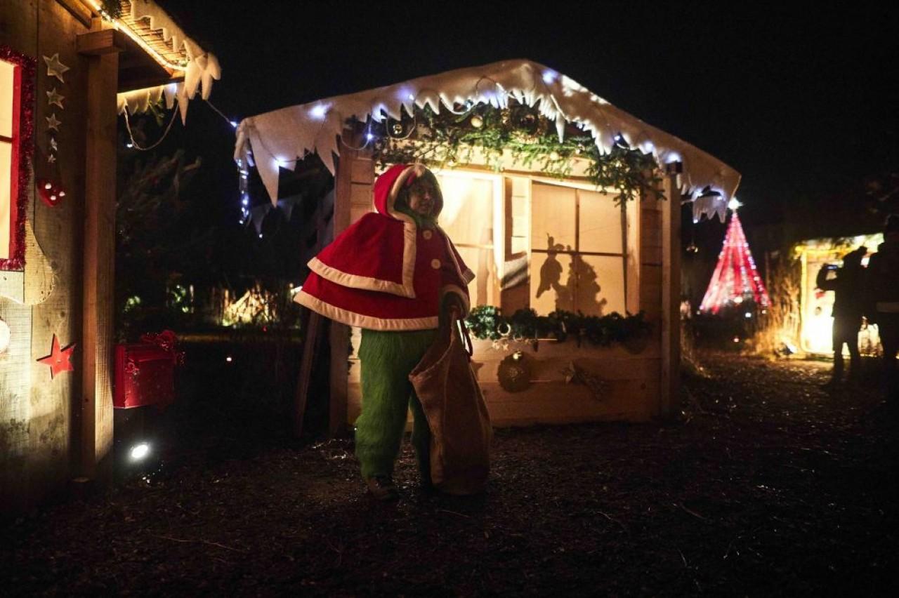 Nocturnes du Noël au jardin, dans le Parc de Wesserling, jusqu'au 30 décembre 2019. ©Steeve Josh
