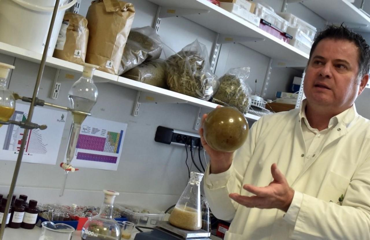 Régis Saladin, directeur des Laboratoires Phytodia, s'inscrit dans l'évolution plus que favorable du marché des cosmétiques naturels. © Julie Giorgi