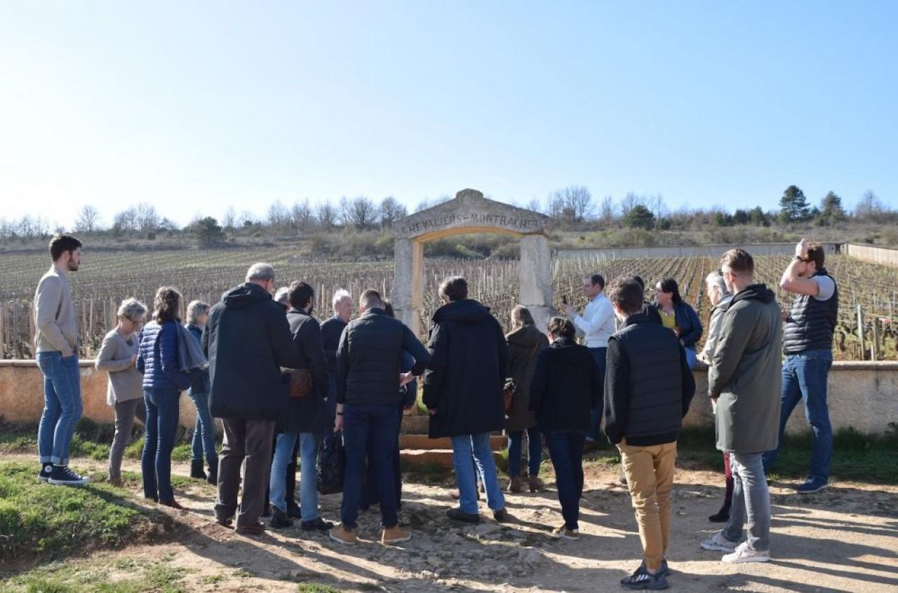 Les deux journées de formation au vin de Bourgogne, proposées par le BIVB, marient théorie, pratique et découverte du vignoble et de ses acteurs. ©Traces Ecrites