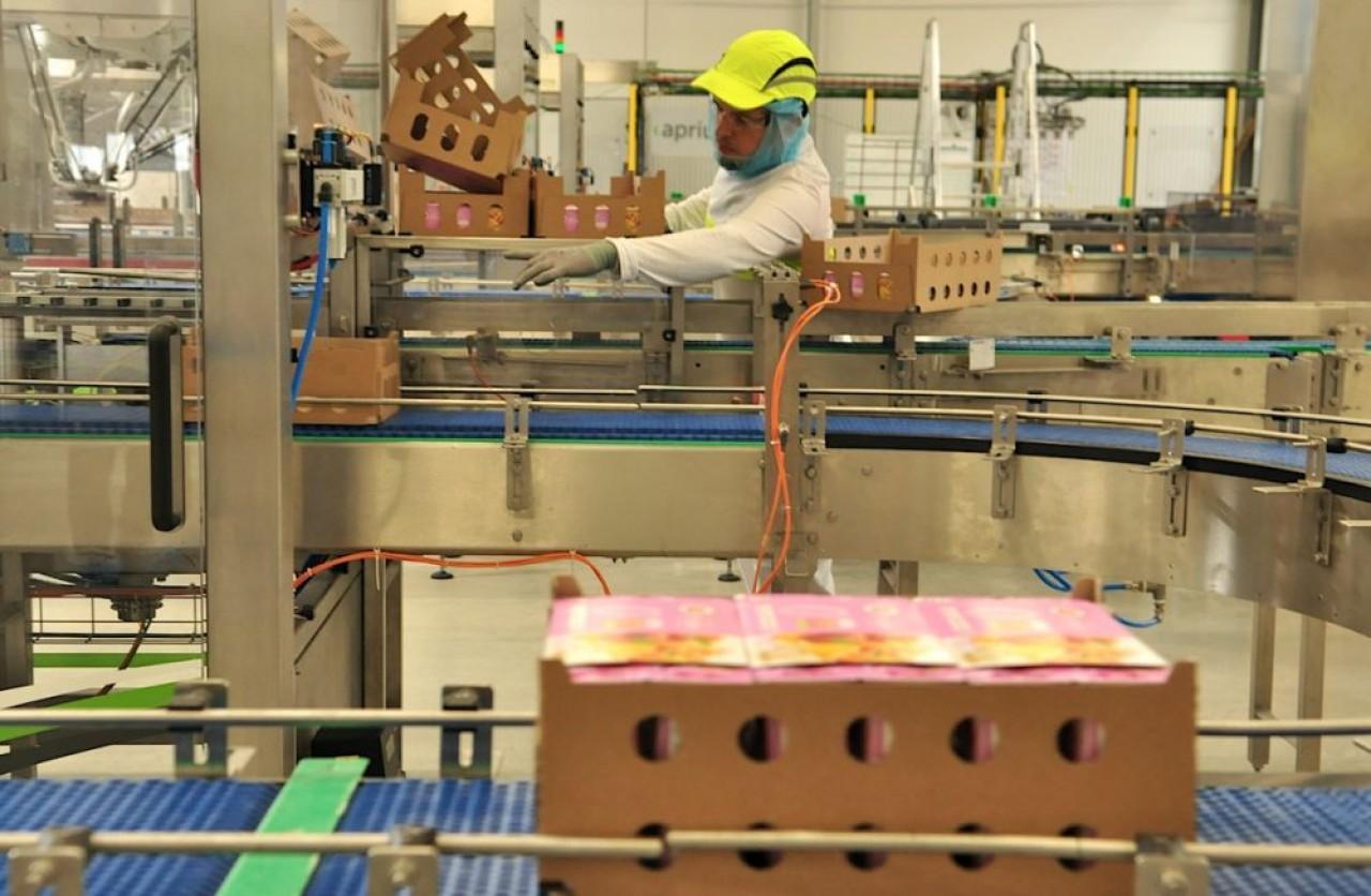 Schreiber Foods a construit 10.000 m² d'ateliers industriels au voisinage direct de la fromagerie historique de Cléry-le-Petit, en Meuse. Un investissement qui s'est traduit par le recrutement de 115 personnes. © Philippe Bohlinger
