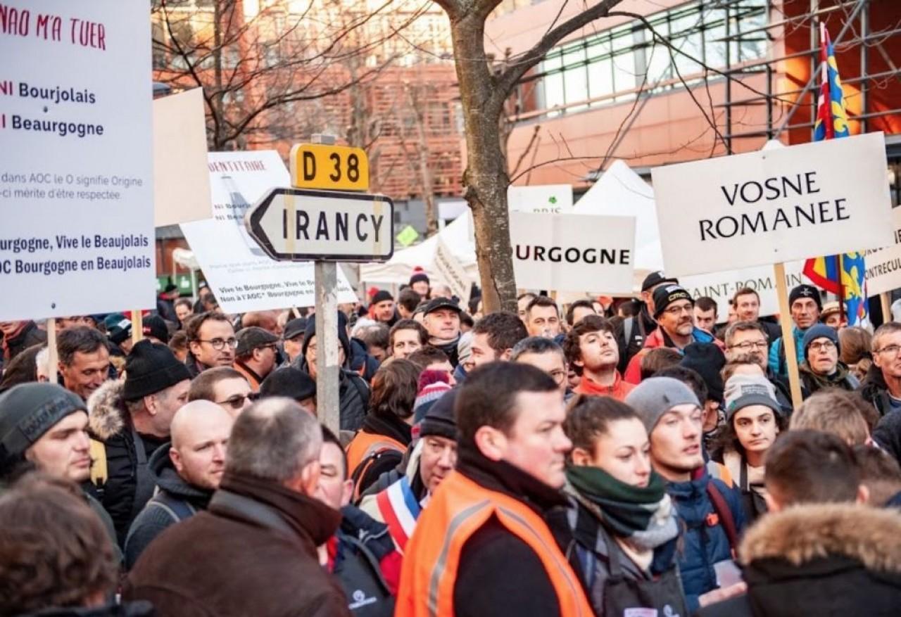450 viticulteurs ont manifesté jeudi 6 février devant le siège de l'Inao, l'organisme qui gère les appellations viticoles, à Montreuil. ©Sébastien Abry/ Syndicat des vignerons.