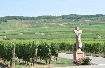 Droit de réponse du Conseil Interprofessionnel des Vins d'Alsace (CIVA) à notre article du 16 mars dernier