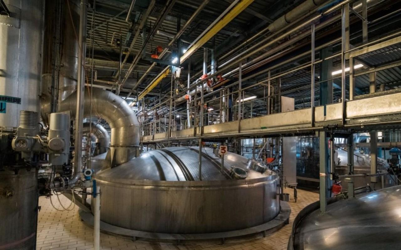 Le site strasbourgeois de Sil-Fala, industriel du nord, est concentré sur la production des levures fraîches dédiées au marché français en quasi-exclusivité. © Traces Ecrites