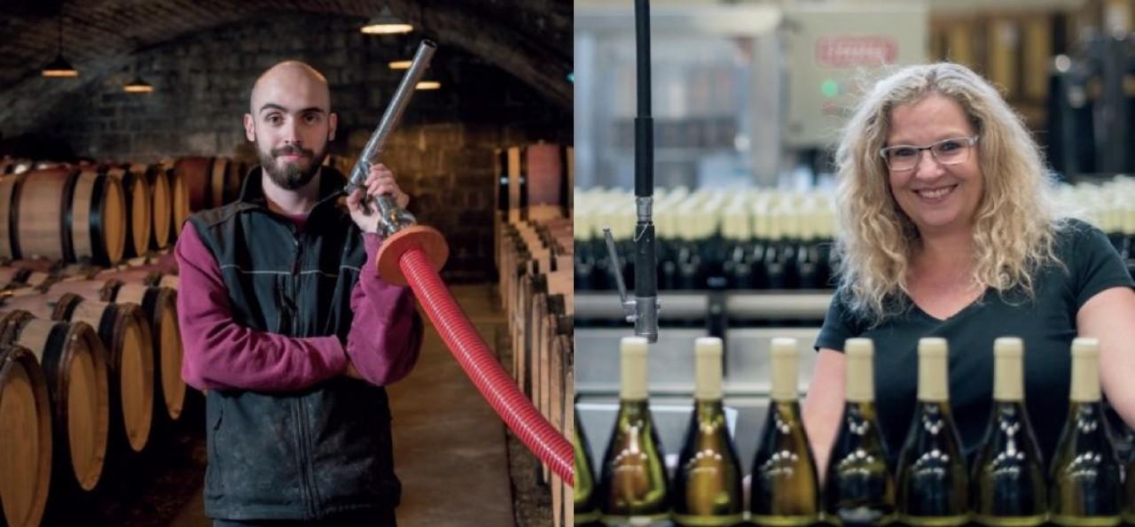 Dans la perspective de 700 embauches à moyen terme, la filière viticole en Bourgogne crée le site internet Vita Bourgogne, pour faire connaître ses métiers. © Vita Bourgogne