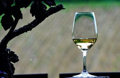 Que sera la Bourgogne viticole en 2030 et boira-t-on le même vin qu'aujourd'hui ?