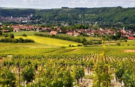 Ces vignobles méconnus de Bourgogne : le Tonnerrois, entre Chablis et Champagne
