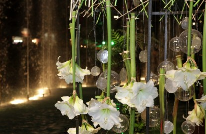 Florissimo : les recettes économiques de Dijon Congrexpo