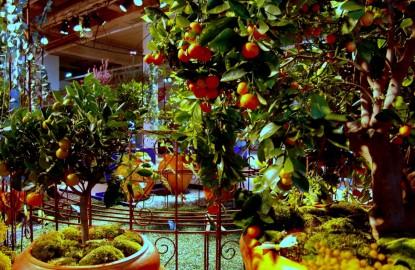 Dijon Congrexpo mettra la prochaine foire gastronomique sous serre