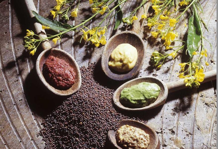 La moutarderie fallot connecte la bourgogne et la californie - Moutarde fallot vente ...