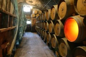 Chai de la maison Henri Maire ou vieillit notamment le vin jaune.