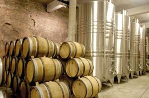 Louis Picamelot produit jusqu'à 250 000 bouteilles par an, dont 90 000 à partir de ses propres vignes.