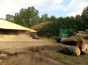 Opération de broyage du bois.