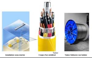 Vallourec fabrique les tubes pour ces câbles de liaison entre les forages sous-marins et la plateforme pétrolière.