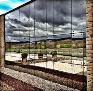 Siège de l'entreprise et ses façades de verre qui se reflètent sur le vignoble de Meursault.