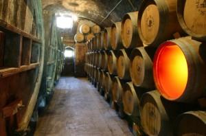 L'une des caves ou vieillit l'or du Jura, son Vin Jaune.