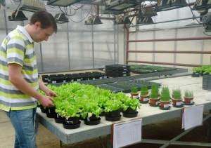Déjà financé par Sodiv au titre du laboratoire d'analyses agronomiques Sadef à Aspach-le-Bas (Haut-Rhin), Sylvain Michel l'est à nouveau pour sa nouvelle société Agrostation (expérimentation de produits phytosanitaires) sur le même site.