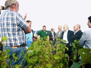 La profession viticole bourguignonne entend se serrer les coudes en faveur des vignerons sinistrés.