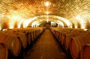 Des caves de 70 mètres de long et 10 mètres de large.